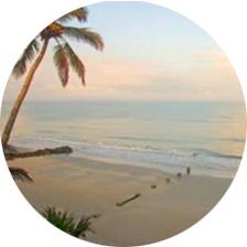 Southwest Florida Vacation Rentals
